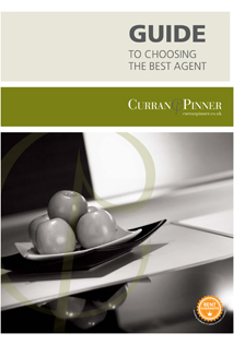 Guide to Choosing the best Agent